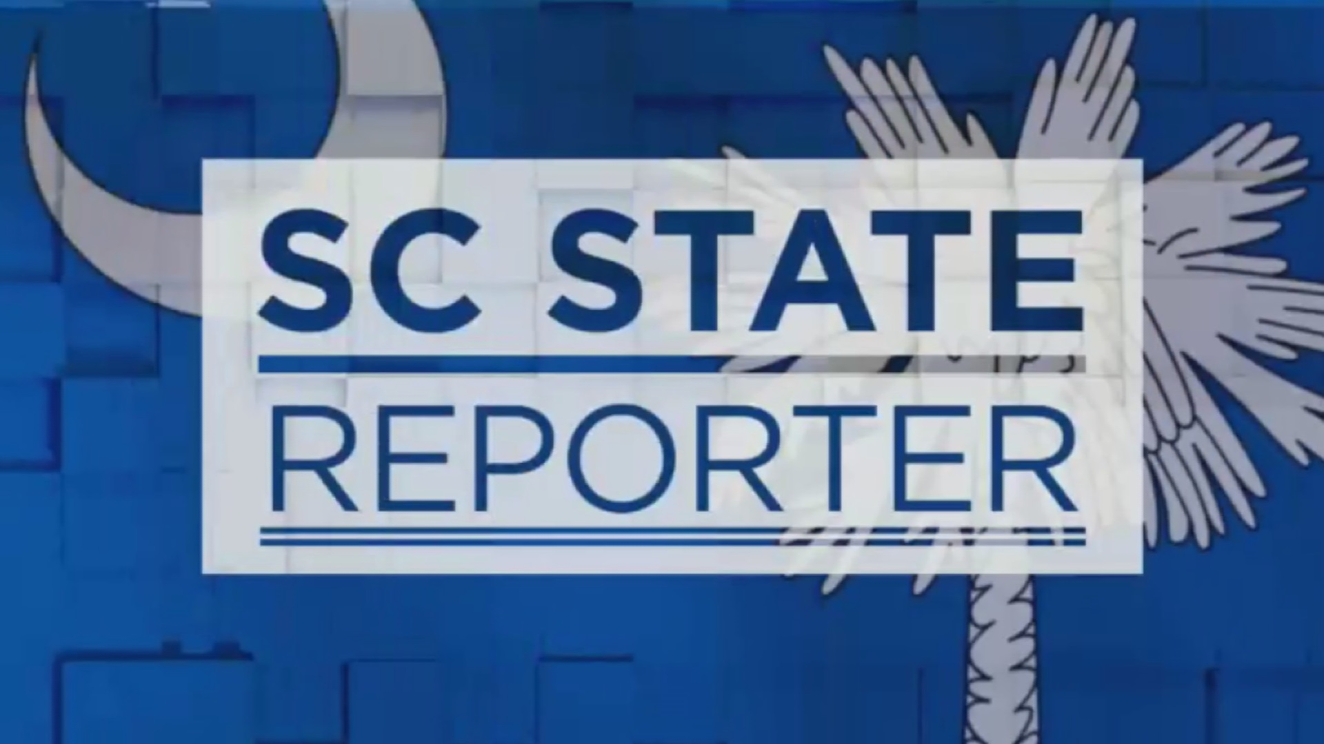 state reporter
